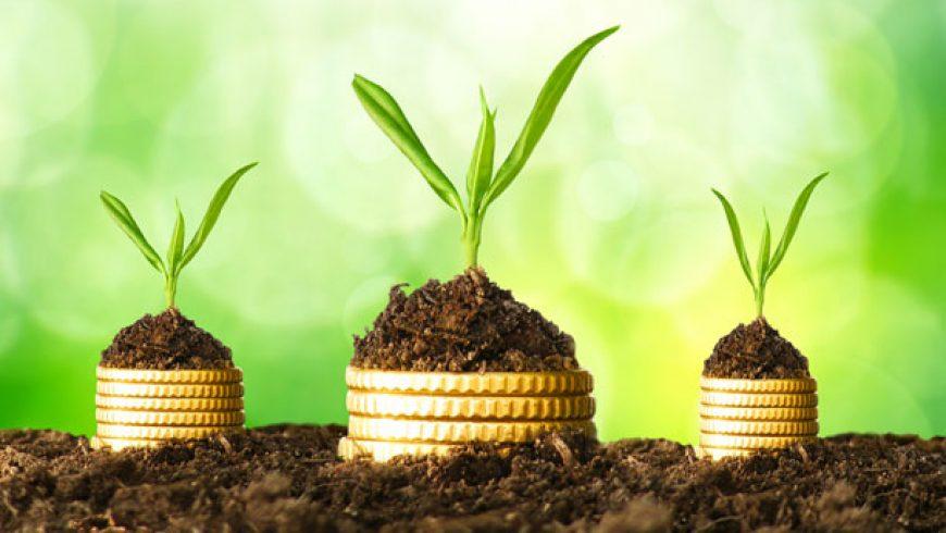 Ecobonus e risparmio energetico