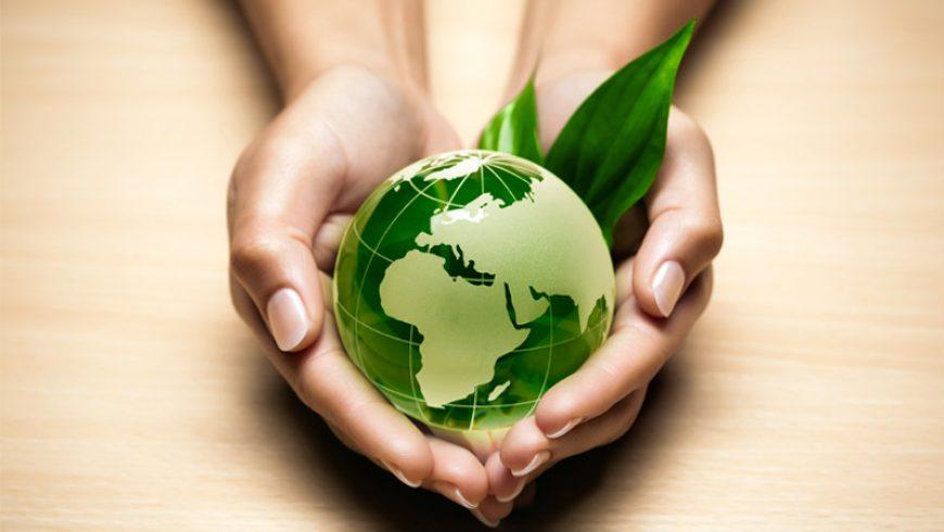 Ecos e il rispetto per l'ambiente